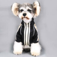 2020 Dog Coat Spring Autumn Pet Clothing Small Designer Dog Clothes Dog Clothes: Shirts, Sweaters & Jackets Apparel