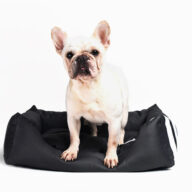 Factory Supply Wholesale Luxury Pet Bed Soft Square Elegant Noble Series Dog Bed Dog Bag & Mat: Pet Products, Dog Goods