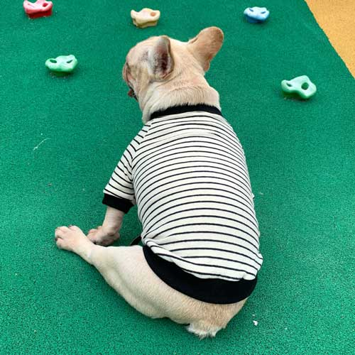 Striped Cotton Parent-child Outfit Pet Clothing Dog Clothes Pets For Spring and Autumn-06-0497